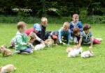 ALSH BIET Accueil de Loisirs Belle-Isle médiation animale enfants découverte activités animations ateliers