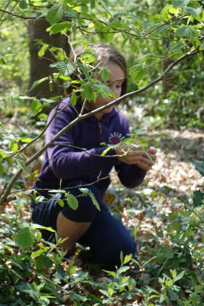 Enfant nature protection biodiversité environnement fête nature
